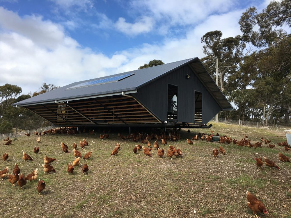 moving hen house
