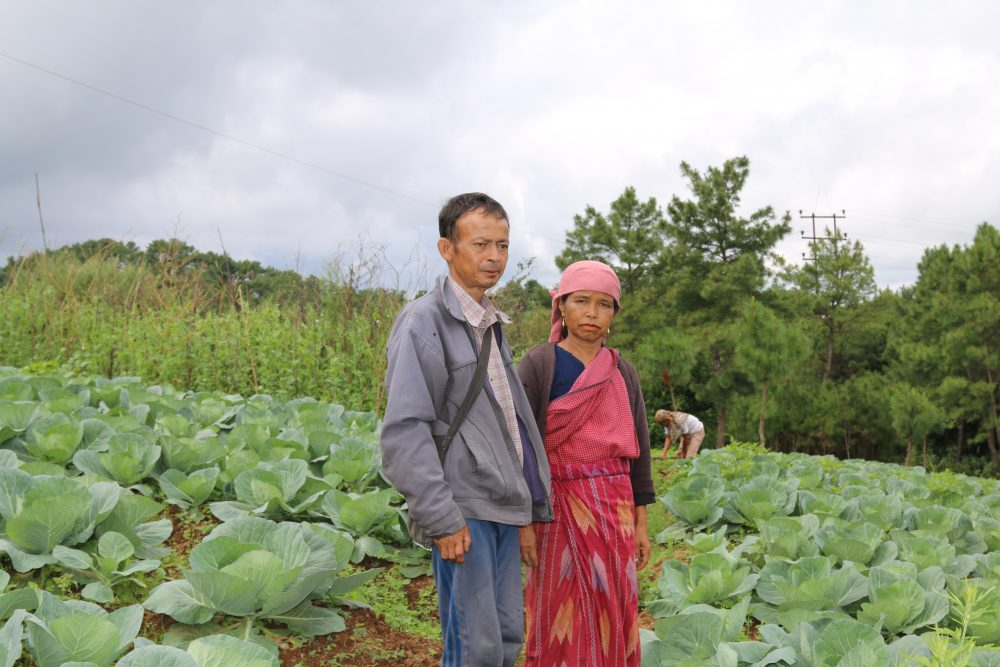 Zizira WooCommerce entrepreneurs Perilla seed farmer